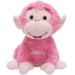 (Set) Love Me Coco Monkey Plush Valentine's Day Animated Toy w/ Batteries (2)