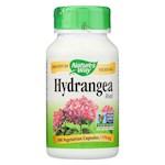 Nature's Way - Hydrangea Root - 415 mg - 100 Capsules (1)